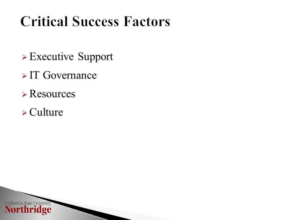  Executive Support  IT Governance  Resources  Culture