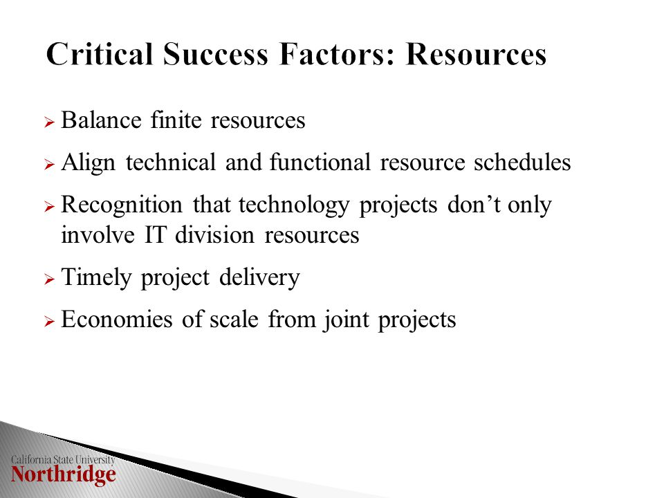  Balance finite resources  Align technical and functional resource schedules  Recognition that technology projects don't only involve IT division resources  Timely project delivery  Economies of scale from joint projects