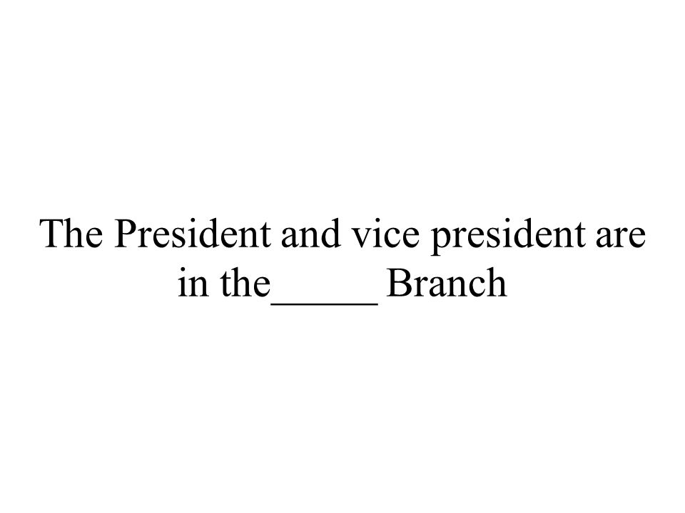 The President and vice president are in the_____ Branch