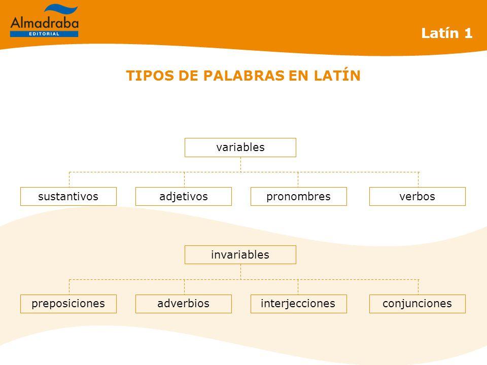 Latín 1 sustantivosadjetivospronombres variables verbos preposicionesadverbiosinterjecciones invariables conjunciones TIPOS DE PALABRAS EN LATÍN