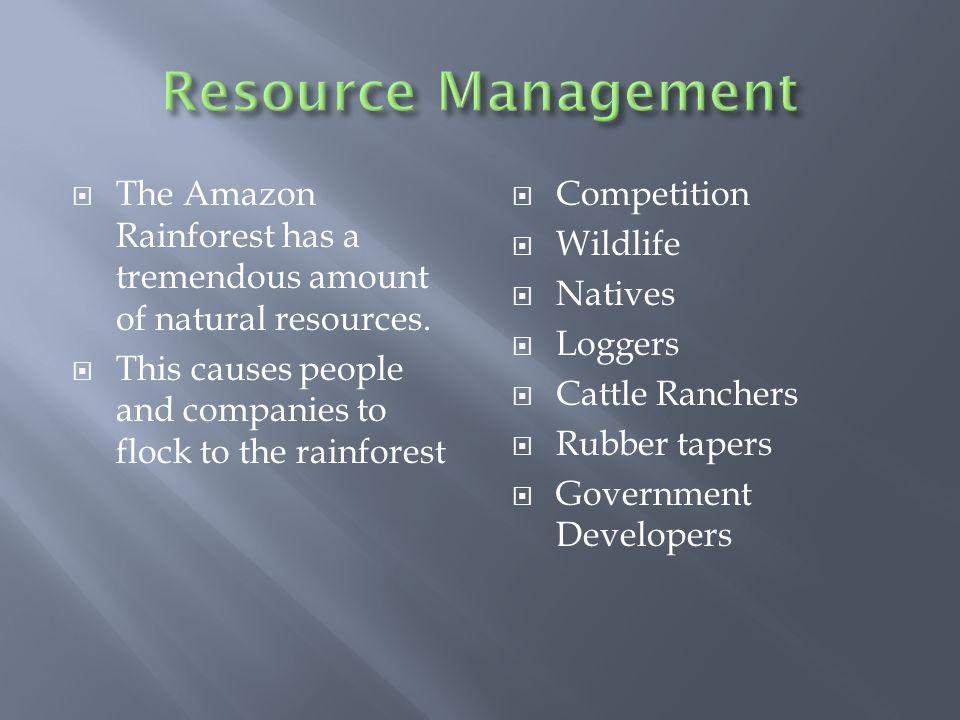  The Amazon Rainforest has a tremendous amount of natural resources.