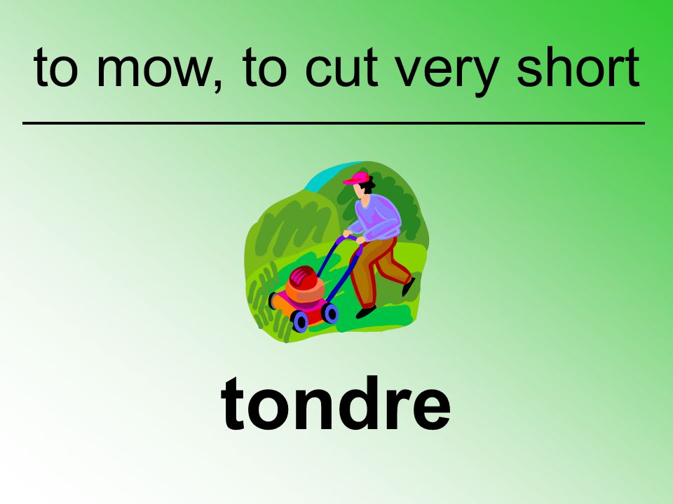 to mow, to cut very short tondre