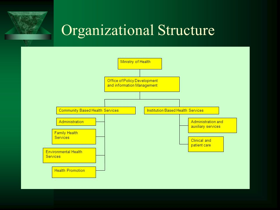 Organizational Structure Ministry of Health Office of Policy Development and information Management Community Based Health ServicesInstitution Based Health Services Administration Family Health Services Environmental Health Services Health Promotion Administration and auxiliary services Clinical and patient care