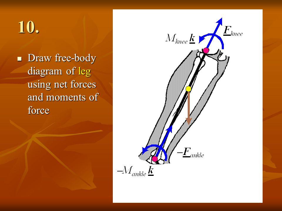10. Draw free-body diagram of leg using net forces and moments of force Draw free-body diagram of leg using net forces and moments of force