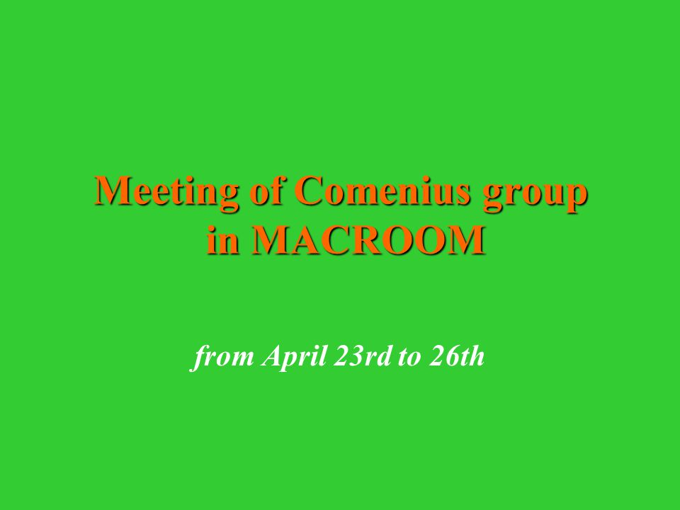 Meeting of Comenius group in MACROOM from April 23rd to 26th