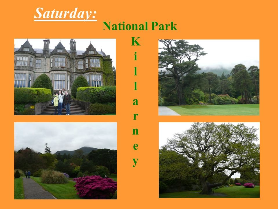 Saturday: National Park KillarneyKillarney