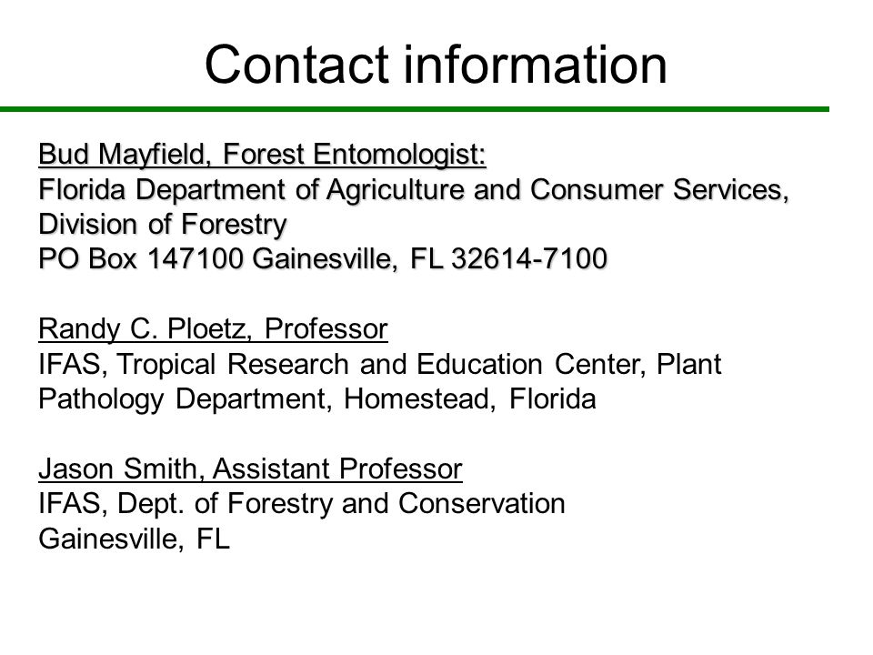 Contact information Bud Mayfield, Forest Entomologist: Florida Department of Agriculture and Consumer Services, Division of Forestry PO Box 147100 Gai