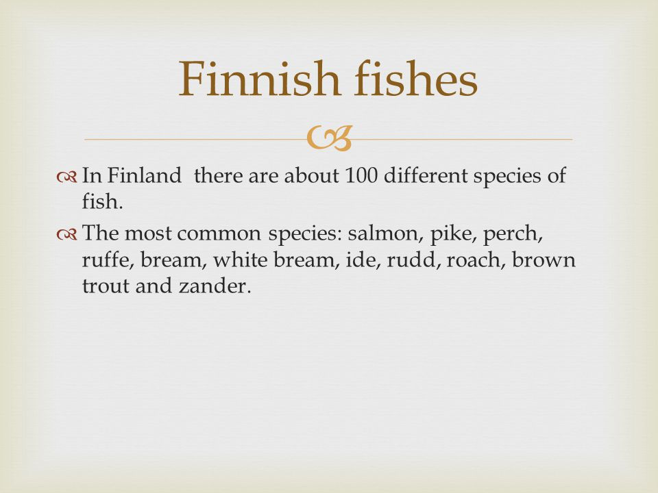   In Finland there are about 100 different species of fish.