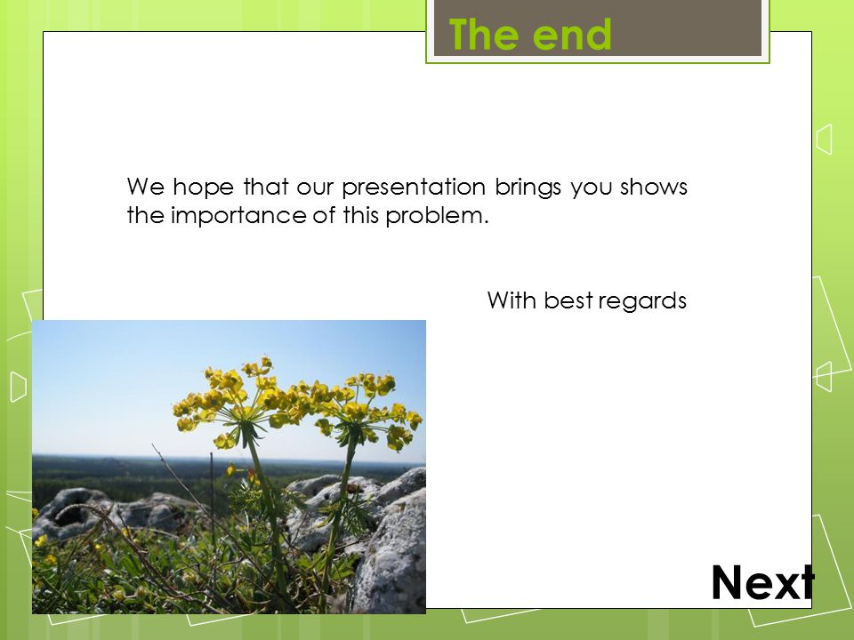 The end Next We hope that our presentation brings you shows the importance of this problem. With best regards