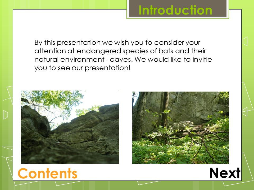 Introduction Next By this presentation we wish you to consider your attention at endangered species of bats and their natural environment - caves.