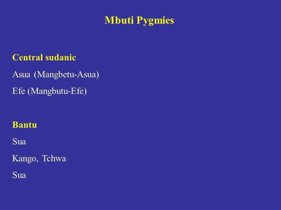 Mbuti Pygmies Central sudanic Asua (Mangbetu-Asua) Efe (Mangbutu-Efe) Bantu Sua Kango, Tchwa Sua