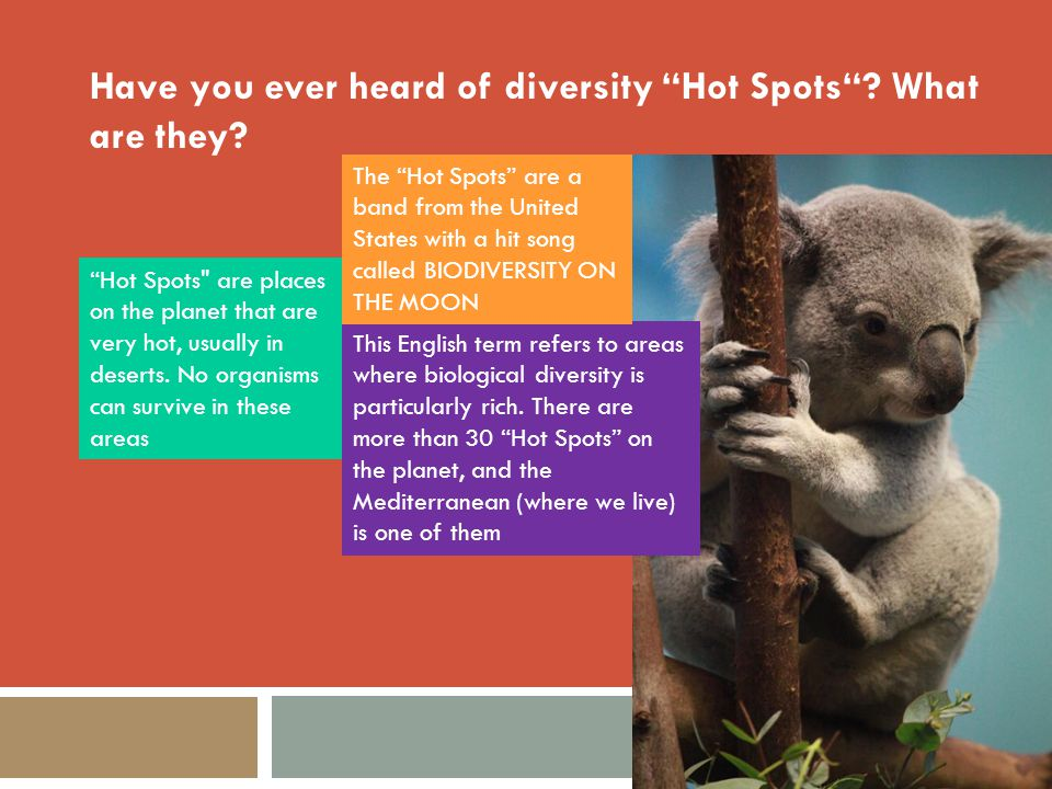 "Have you ever heard of diversity ""Hot Spots""? What are they? ""Hot Spots"