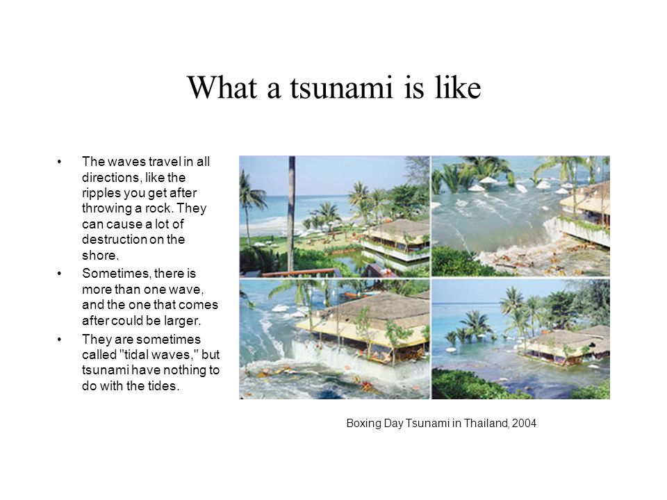 What a tsunami is like The waves travel in all directions, like the ripples you get after throwing a rock.