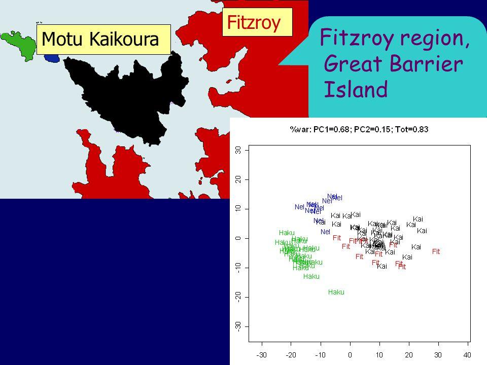 Fitzroy Motu Kaikoura Fitzroy region, Great Barrier Island