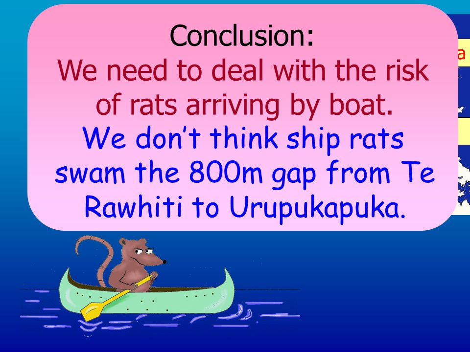 Kerikeri Urupukapuka Rawhiti Urupukapuka Kerikeri Conclusion: We need to deal with the risk of rats arriving by boat.