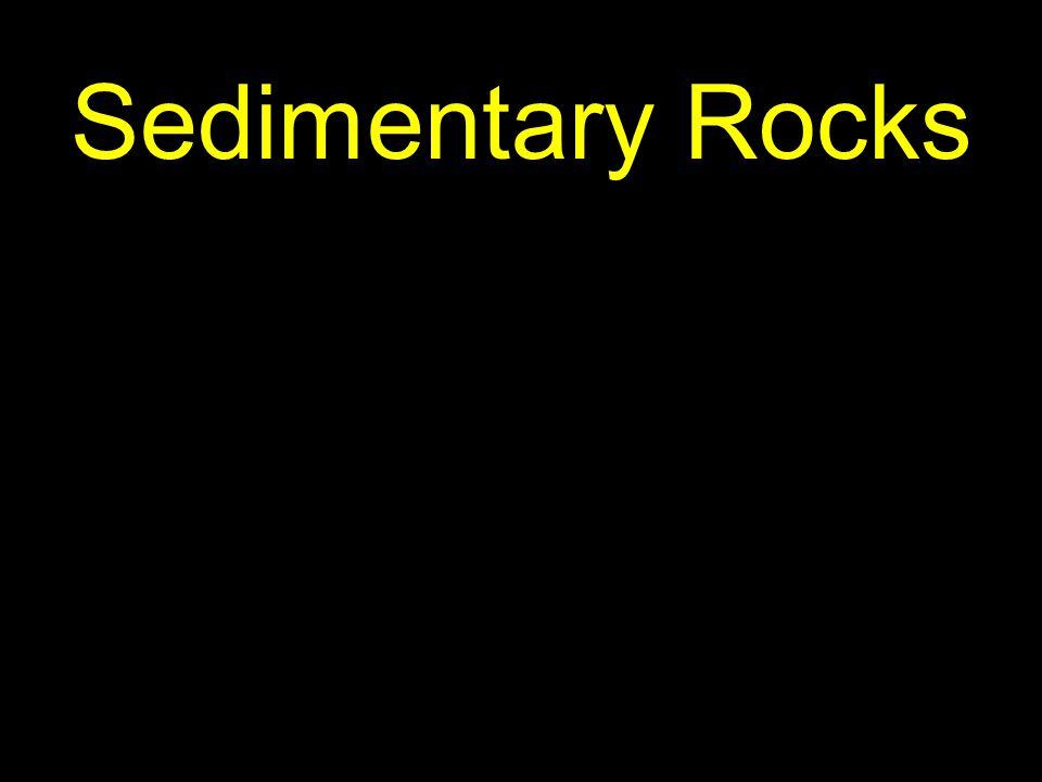 3 Sedimentary Rocks
