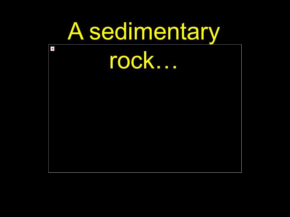 48 A sedimentary rock…