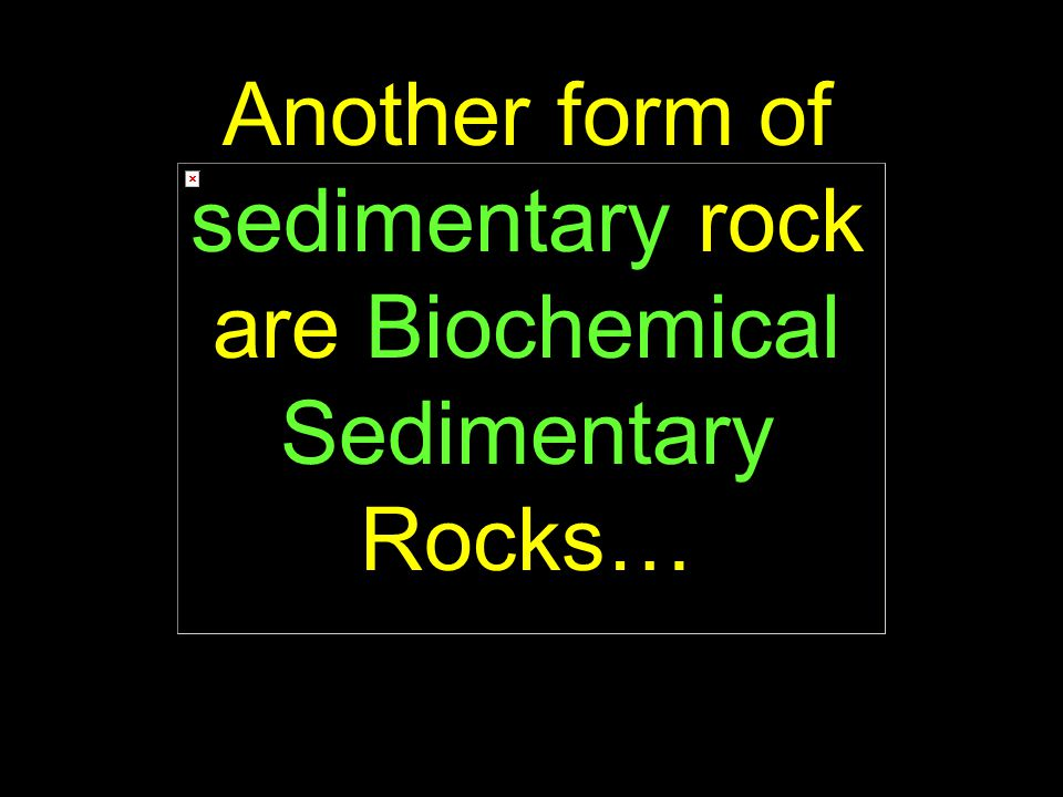 89 Another form of sedimentary rock are Biochemical Sedimentary Rocks…