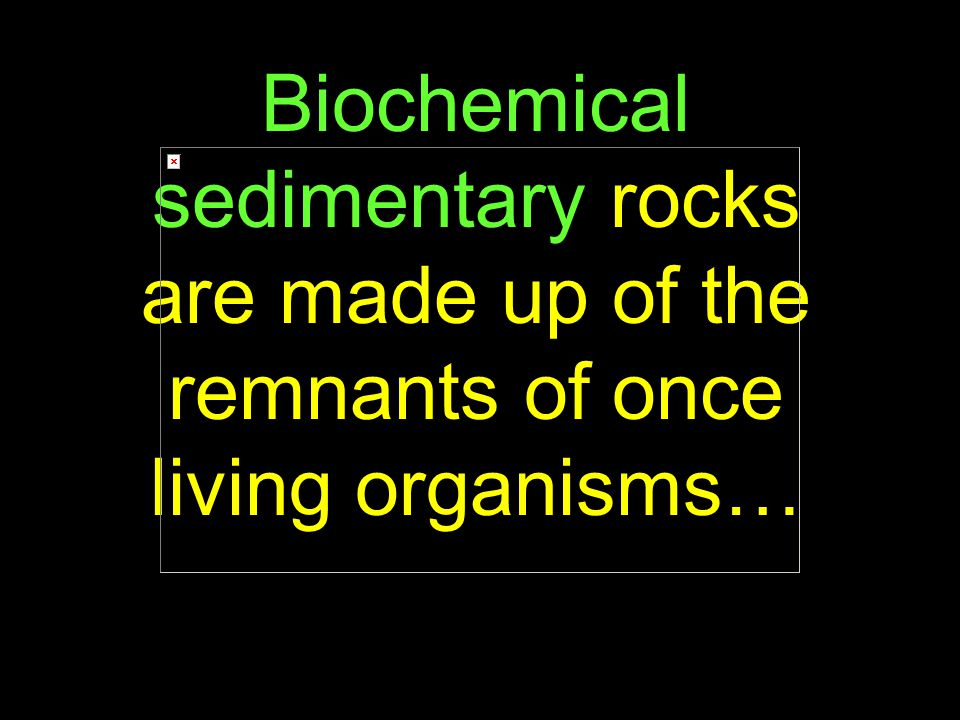 90 Biochemical sedimentary rocks are made up of the remnants of once living organisms…