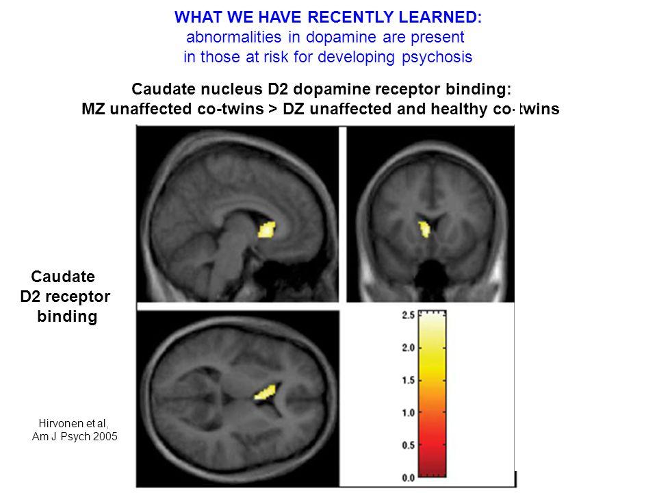 Hirvonen et al, Am J Psych 2005 Caudate nucleus D2 dopamine receptor binding: MZ unaffected co-twins > DZ unaffected and healthy co-twins Caudate D2 r