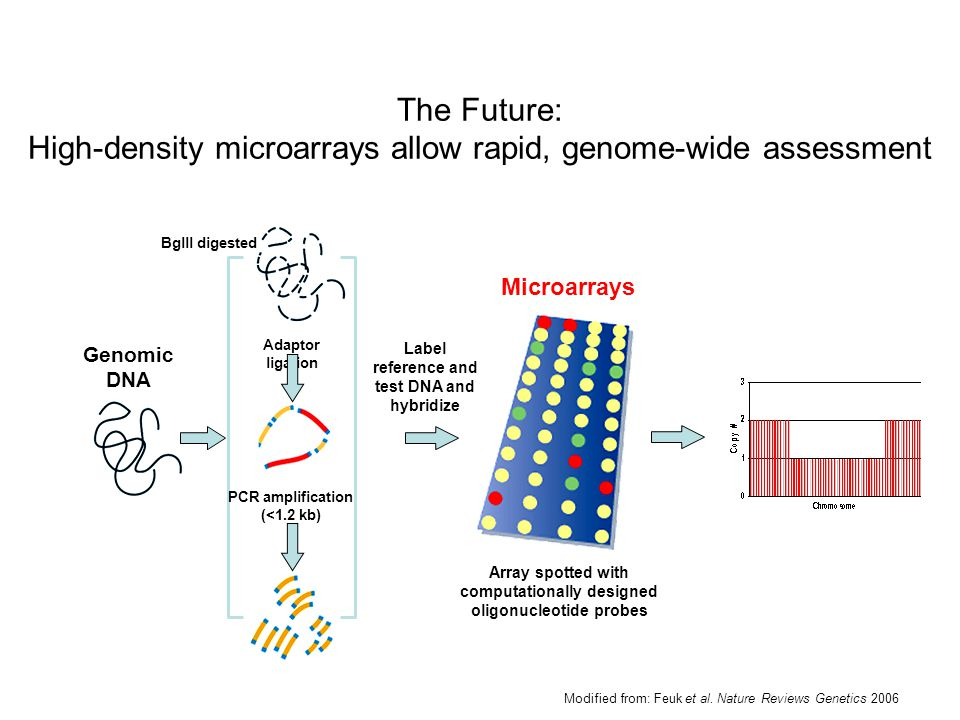 Modified from: Feuk et al. Nature Reviews Genetics 2006 Genomic DNA Label reference and test DNA and hybridize Microarrays Array spotted with computat