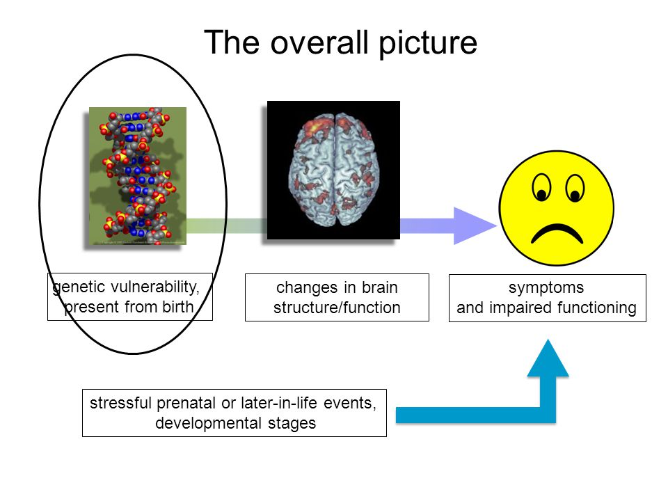 One example: there is reduced communication between two cortical areas (within the cingulate gyrus) in schizophrenia 0.15 1.0 Correlation (r) Controls * Schizophrenia * Holt et al, Biol Psych 2011, WHAT WE HAVE RECENTLY LEARNED: The connections and communication among different brain regions are affected in schizophrenia