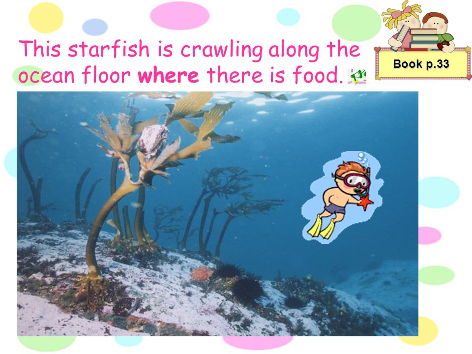 Book p.33 The tiny fish are fleeing from the big fish that is chasing them. Bob's class is watching a documentary film about ocean creatures.