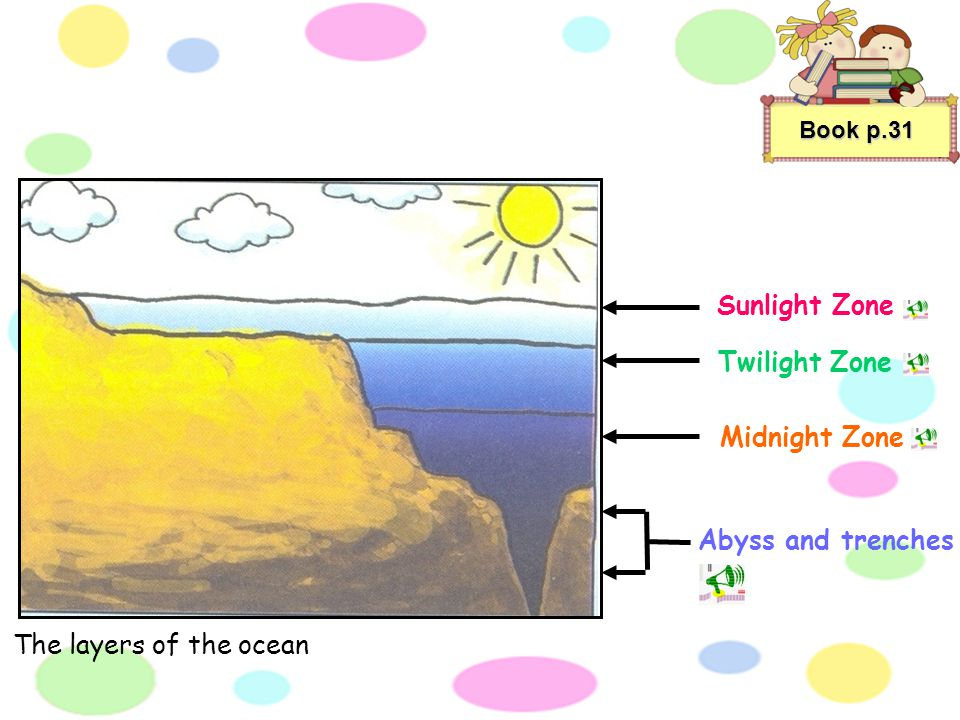Book p.31 There are all kinds of life forms in the oceans. Some examples are giant squid and seahorses. Some plants are so small that you would need a