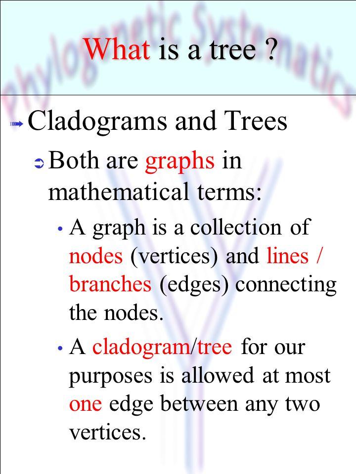 Cladogram = Set of Trees C B A B C A ABC = ? ? A C B ? A BC ? A BCBA C ? B AC ?