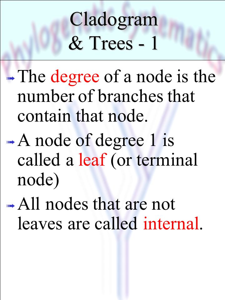 Cladogram & Trees - 1 ß The degree of a node is the number of branches that contain that node. ß A node of degree 1 is called a leaf (or terminal node