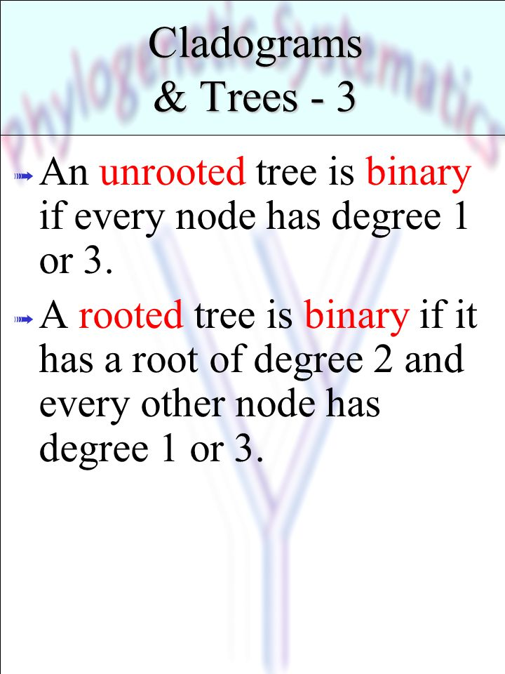 Cladograms & Trees - 4 Leaf Root Node Branch CAB Label ? ß Labeled rooted binary tree