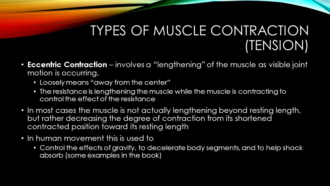 TYPES OF MUSCLE CONTRACTION (TENSION) Static (Isometric) Muscle Contraction – involves partial or complete contraction of a muscle where no visible joint movement occurs Loosely means equal length Use to maintain posture.