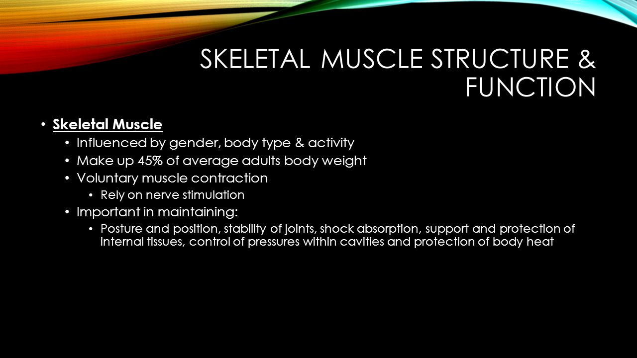 SKELETAL MUSCLE STRUCTURE & FUNCTION Properties of Skeletal Muscle Tissue Characterized by: irritability, extensibility & elasticity Irritability is the ability to receive and respond to a stimulus, commonly from an associated nerve -- Reaction is tension or contraction Elasticity is the ability of a muscle to return to its resting length after being stretched Connective tissue associated with muscle has another property, Viscousity.