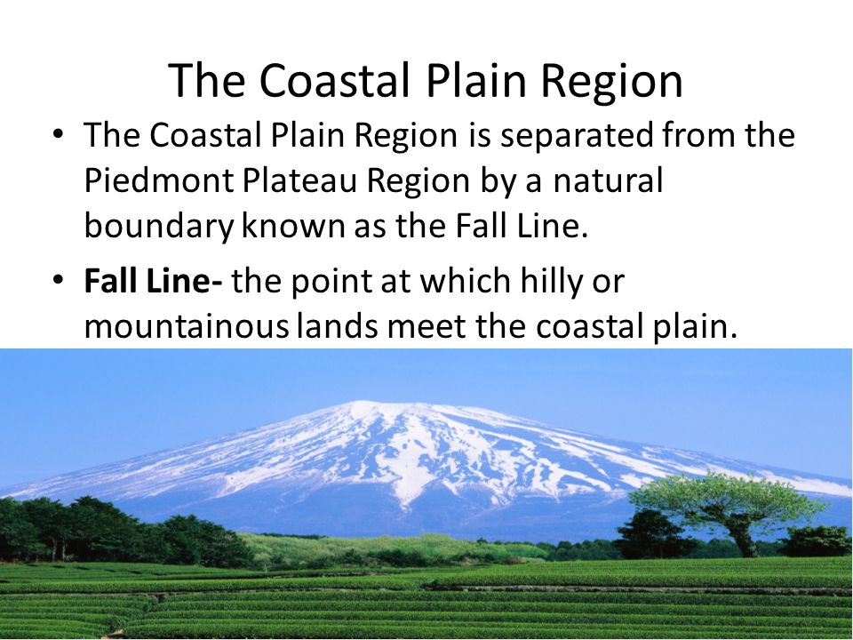 The Coastal Plain Region The Coastal Plain Region is separated from the Piedmont Plateau Region by a natural boundary known as the Fall Line. Fall Lin