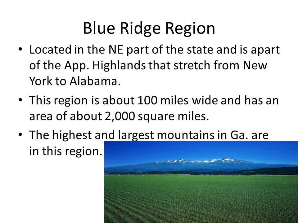 Blue Ridge Region Located in the NE part of the state and is apart of the App. Highlands that stretch from New York to Alabama. This region is about 1