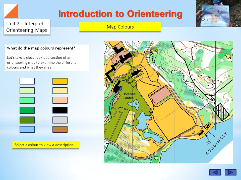 Introduction to Orienteering Unit 2 - Interpret Orienteering Maps Map Colours What do the map colours represent.