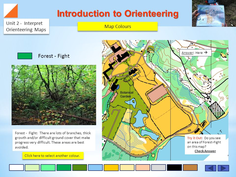 Introduction to Orienteering Unit 2 - Interpret Orienteering Maps Forest - Fight: There are lots of branches, thick growth and/or difficult ground cover that make progress very difficult.