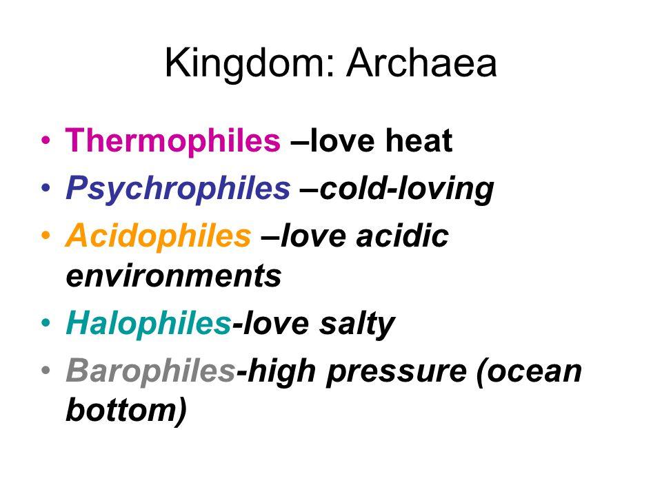 Kingdom: Archaea Thermophiles –love heat Psychrophiles –cold-loving Acidophiles –love acidic environments Halophiles-love salty Barophiles-high pressu
