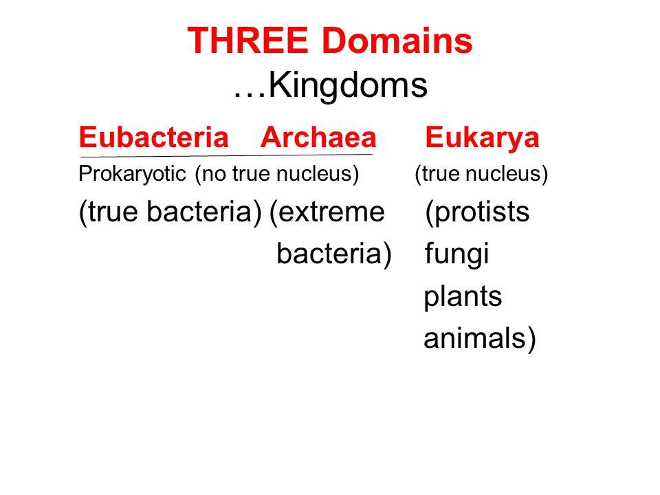 THREE Domains …Kingdoms Eubacteria Archaea Eukarya Prokaryotic (no true nucleus) (true nucleus) (true bacteria) (extreme (protists bacteria) fungi pla