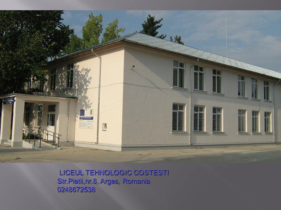 LICEUL TEHNOLOGIC COSTESTI LICEUL TEHNOLOGIC COSTESTI Str.Pietii,nr.8, Arges, Romania 0248672538
