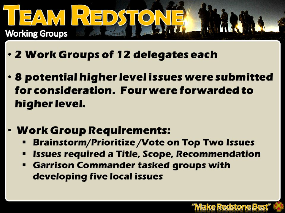 2 Work Groups of 12 delegates each 8 potential higher level issues were submitted for consideration.