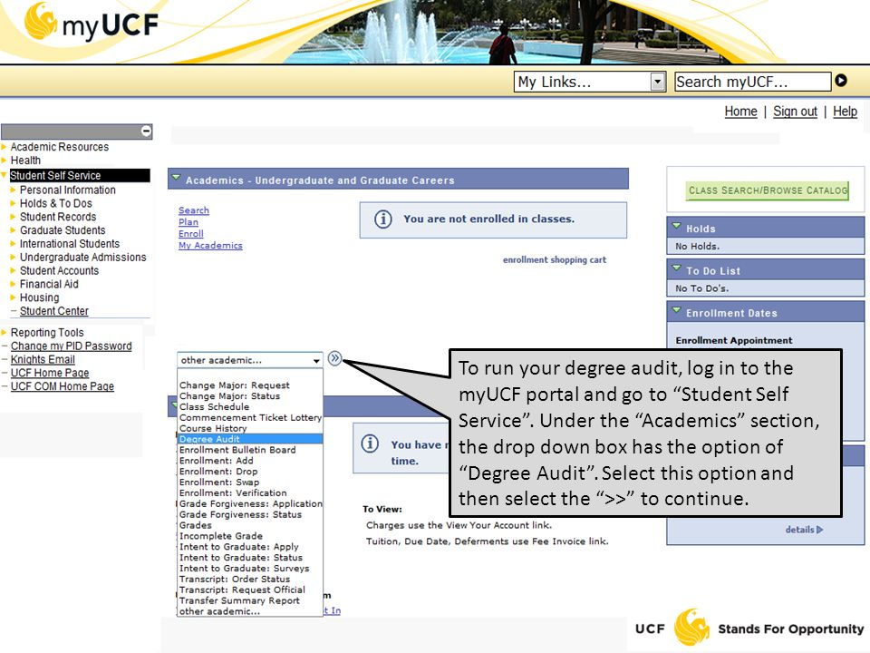 To run your degree audit, log in to the myUCF portal and go to Student Self Service .