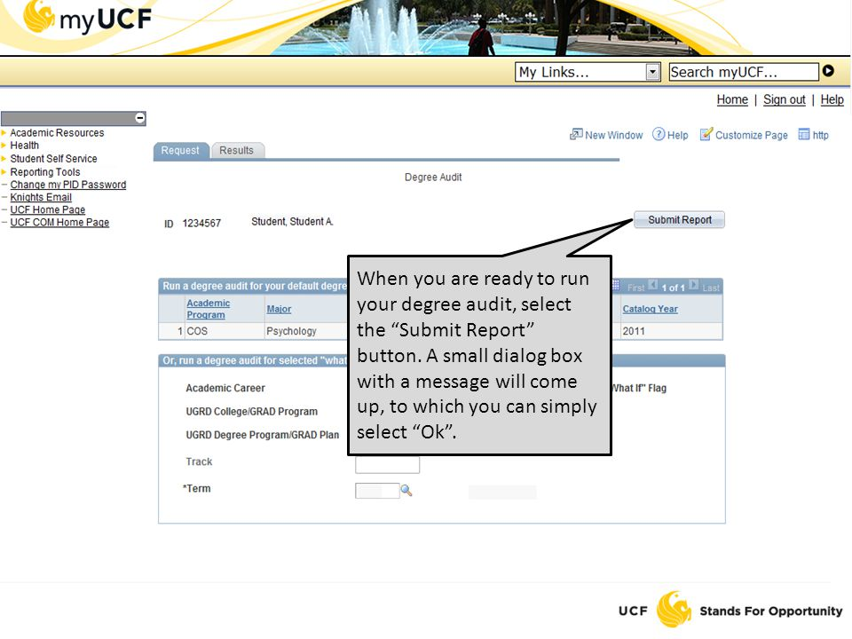 When you are ready to run your degree audit, select the Submit Report button.