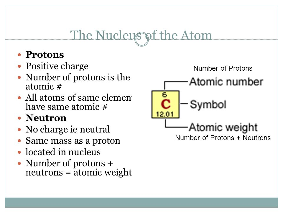 The Nucleus of the Atom Protons Positive charge Number of protons is the atomic # All atoms of same element have same atomic # Neutron No charge ie ne