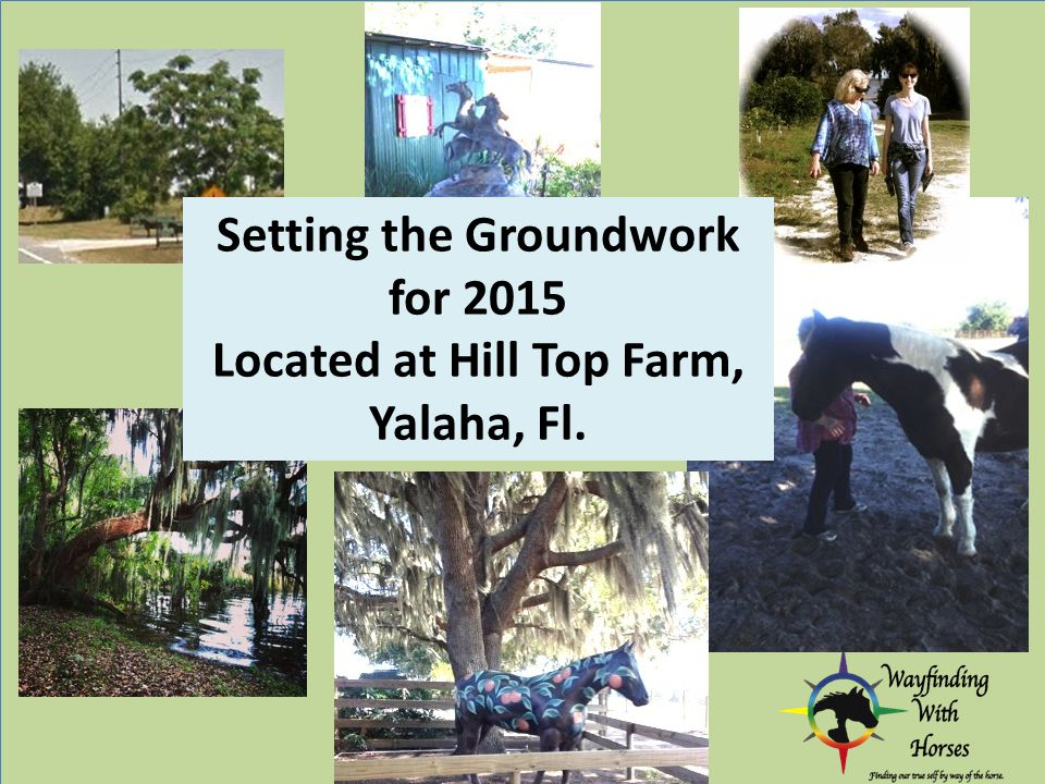 Setting the Groundwork for 2015 Located at Hill Top Farm, Yalaha, Fl.