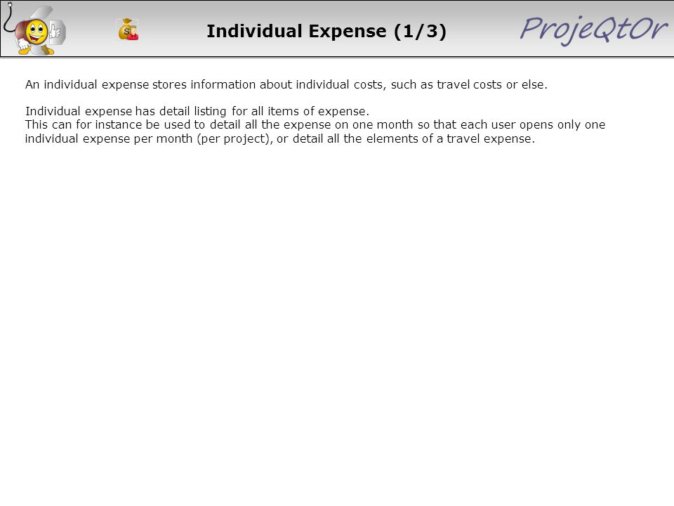 Individual Expense (1/3) An individual expense stores information about individual costs, such as travel costs or else. Individual expense has detail