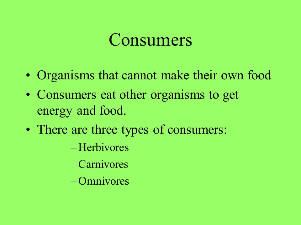Consumer 1: HERBIVORE Vegetarians (They eat vegetables and plants.) Examples: –Rabbits –Deer –Giraffes