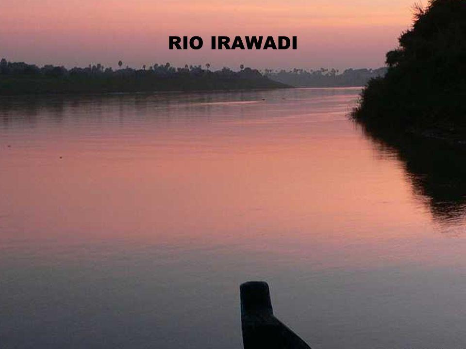 RIO IRAWADI