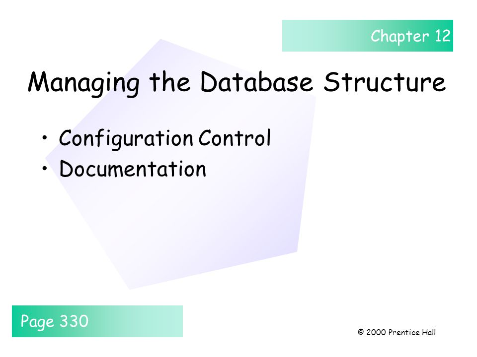 Chapter 12 © 2000 Prentice Hall Managing the Database Structure Configuration Control Documentation Page 330