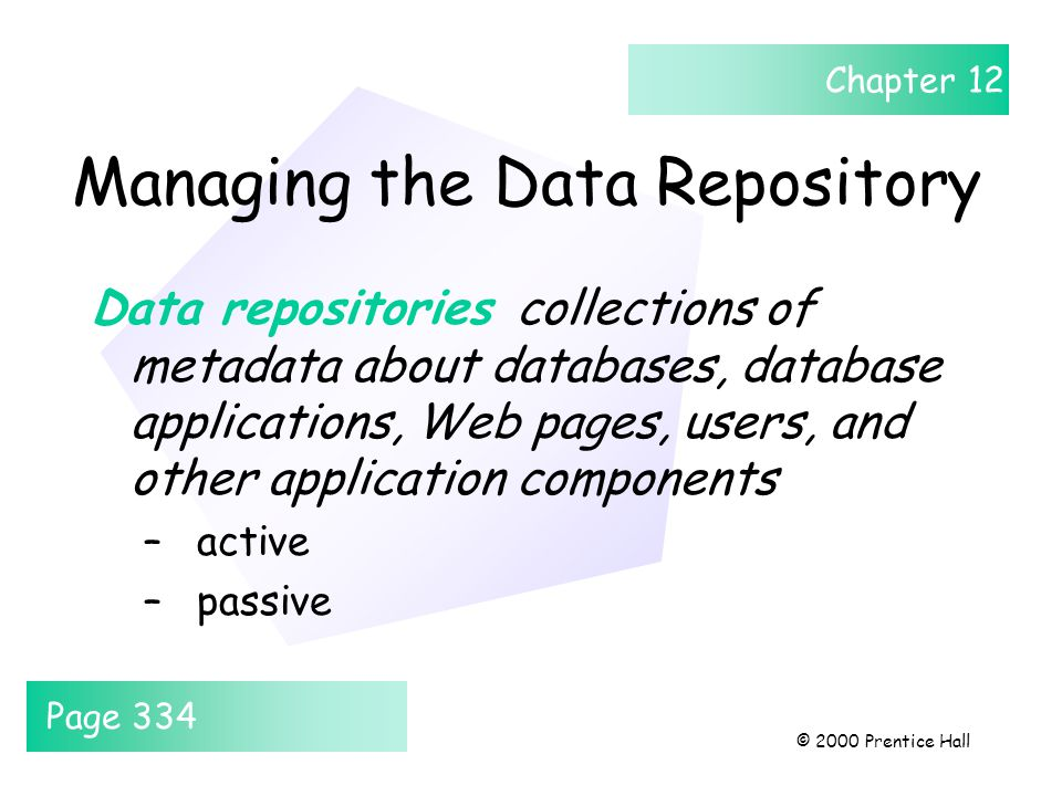 Chapter 12 © 2000 Prentice Hall Managing the Data Repository Data repositories collections of metadata about databases, database applications, Web pag